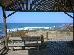 costa vicentina portugal algarve vakantie 6