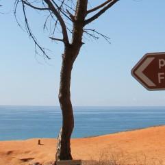 cropped-falesia-beach-vakantie-algarve-portugal-img_8033.jpg
