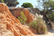 falesia beach vakantie algarve portugal IMG_8042