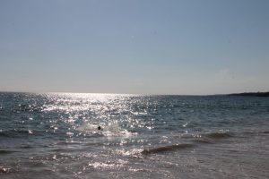 falesia beach vakantie algarve portugal IMG_8076