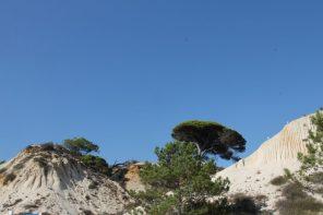 falesia beach vakantie algarve portugal IMG_8095