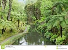 azoren-botanische-tuinen