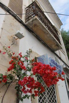 Loule markt - zaterdag - vakantie algarve portugal IMG_8272