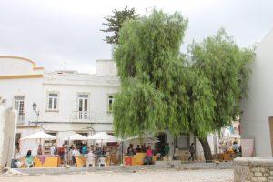 Loule markt - zaterdag - vakantie algarve portugal IMG_8350
