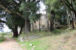 monchique algarve - vakantie algarve IMG_8473