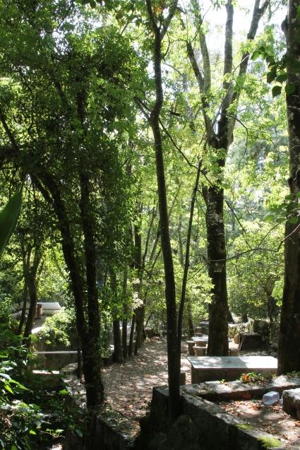 monchique algarve - vakantie algarve IMG_8504