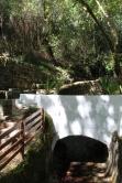 monchique algarve - vakantie algarve IMG_8505