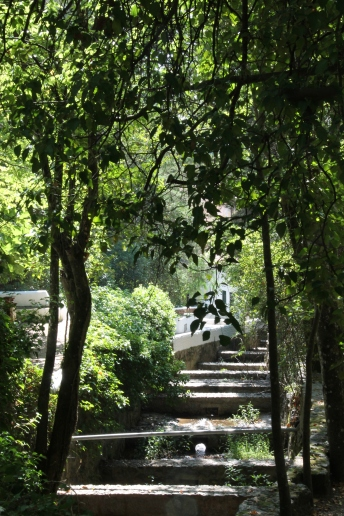 monchique algarve - vakantie algarve IMG_8534