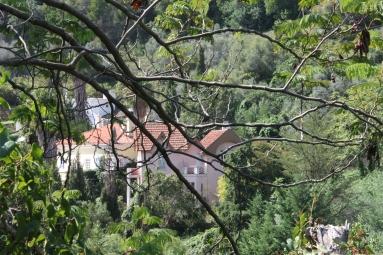 monchique algarve - vakantie algarve IMG_8542