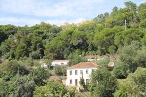 monchique algarve - vakantie algarve IMG_8545
