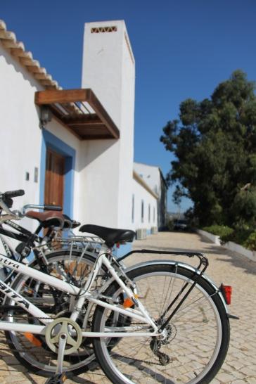 regio albufeira - verblijf in quinta do mel bed and breakfast nabij olhos d'agua en villamoura IMG_8160