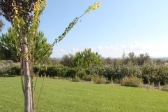 regio albufeira - verblijf in quinta do mel bed and breakfast nabij olhos d'agua en villamoura IMG_8164