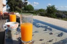 regio albufeira - verblijf in quinta do mel bed and breakfast nabij olhos d'agua en villamoura IMG_8170