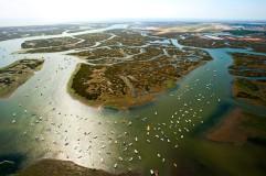 Ria Formosa Faro