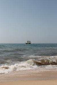 strand da marinha - vakantie algarve nabij carvoeiro - portugal IMG_8901