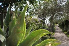 Tavira - algarve vakantie portugal IMG_7907