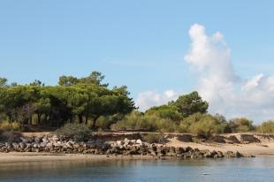 Tavira - algarve vakantie portugal IMG_7993