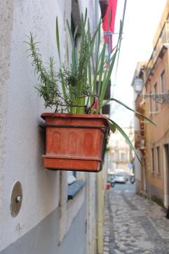 vakantie stedentrip - Lissabon Portugal IMG_6078