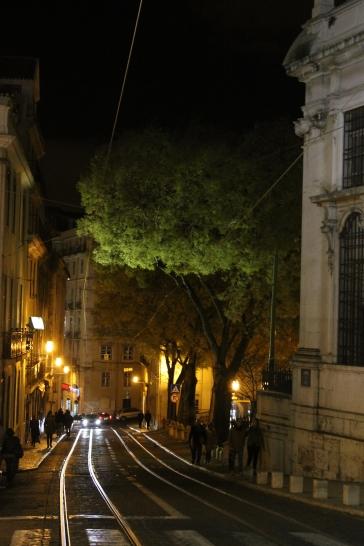 vakantie stedentrip - Lissabon Portugal IMG_6438