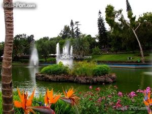 Portugal_madeira_Funchal_Botanical-garden- vakantie portugal