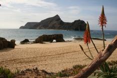 Madeira Porto Santo Calheta strand