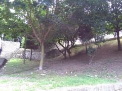 stadspark 5