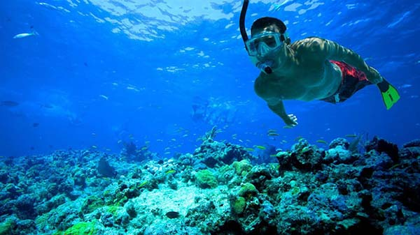 albufeira-snorkelen-algarve