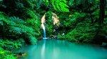 azoren vakantie natuur