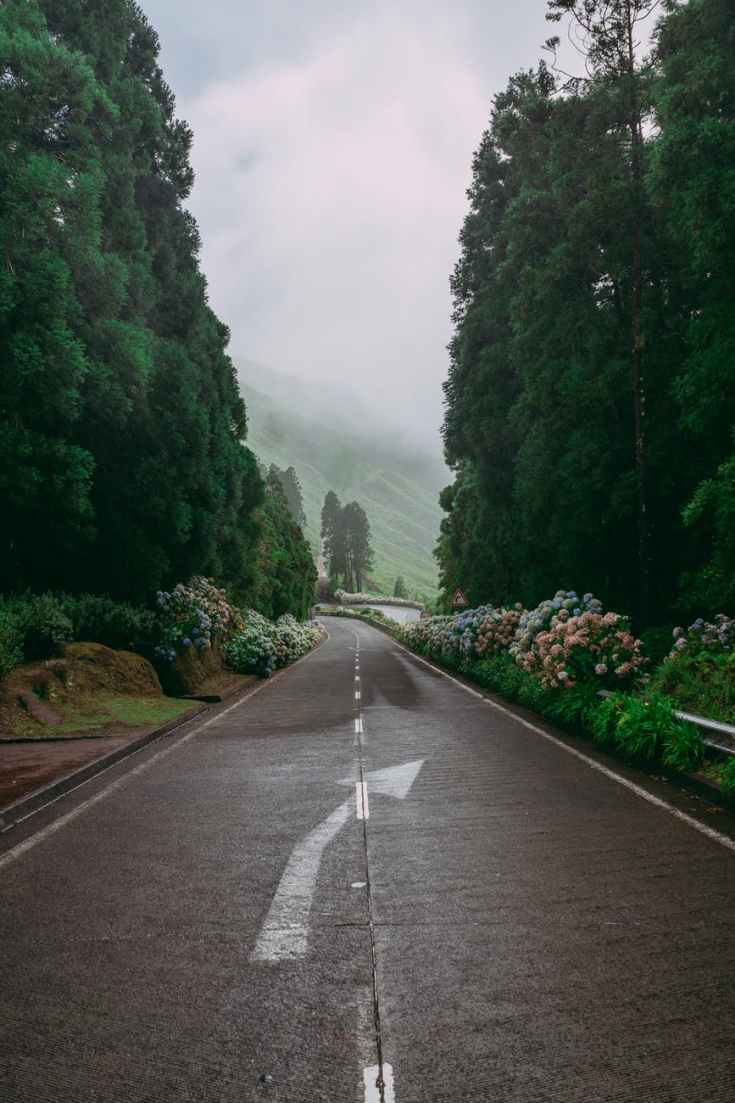 azoren natuur